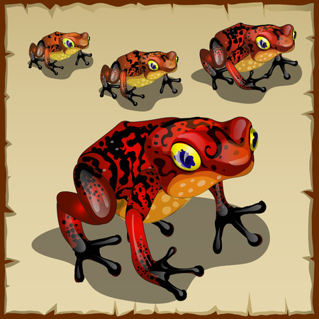 Red spotted toad with big eyes, vector set Illustration