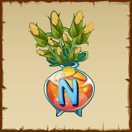 letter n: Vector glass vase with bouquet of corn and letter N Illustration