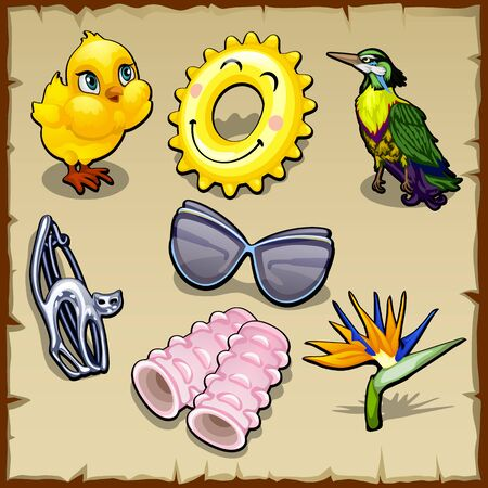 cactus cartoon: Vector set of summer birds and accessories for women