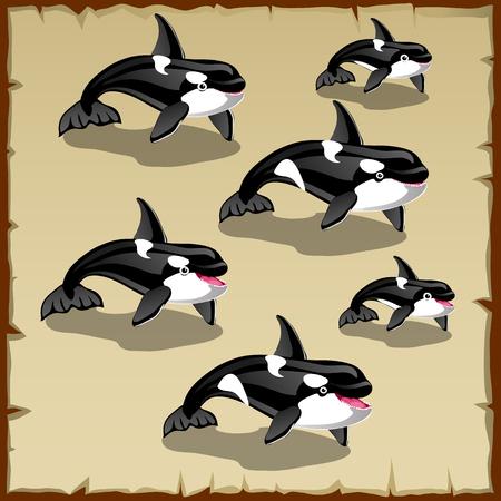 cetacean: Set of cute killer whales, six vector icons