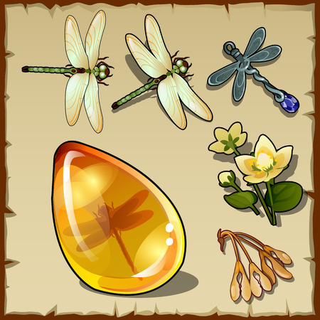 Symbols of summer, plants, dragonflies and sun amber