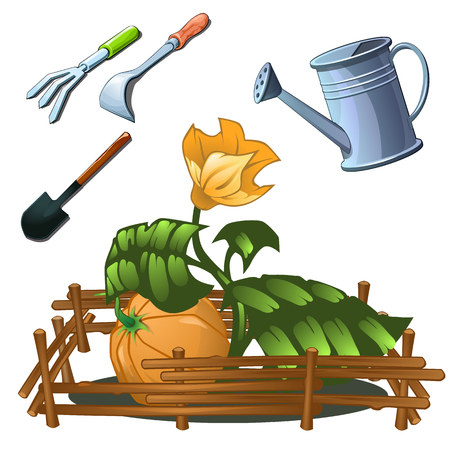 cultivation: Tools set for the cultivation of horticultural crops, isolated image Illustration