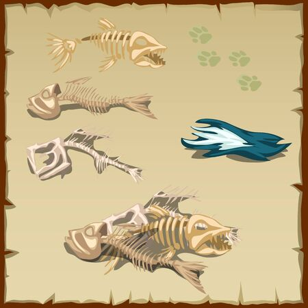 cartoon fishing: Skeletons of different fish and other items on the background parchment