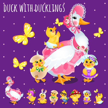 Duck with ducklings, big funny family, vector illustration