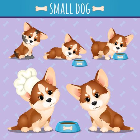 funny love: Small brown dog with food in different poses, vector set