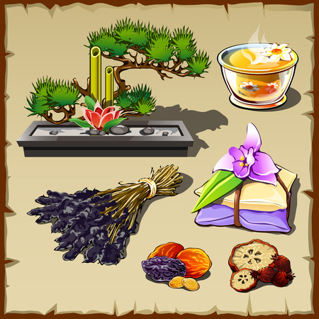 broth: Set of garden stones, spices, herbs, broth and colors Illustration