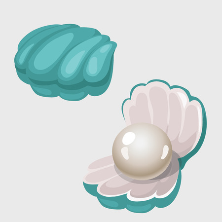 Open and closed shell box with white pearl, two image isolated vector illustration