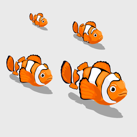 Clown fish small and close up isolated, vector set