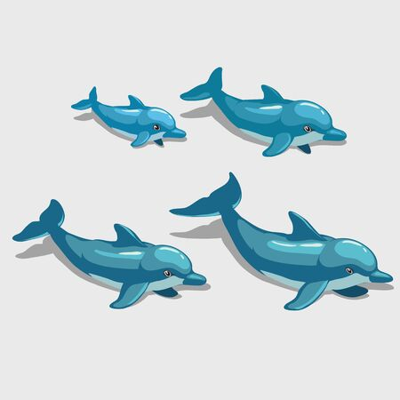 nemo: Four cartoon Dolphin isolated, character for your design needs Illustration