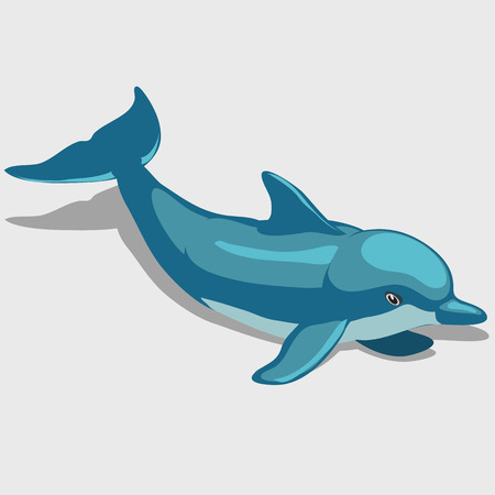 nemo: Cartoon Dolphin isolated, character for your design needs