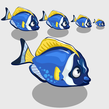 nemo: Blue tropical fish small and closeup isolated, icon set