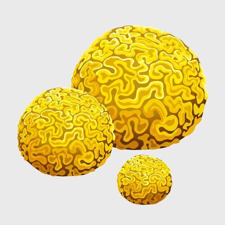 esponja amarilla bajo el agua, pólipos en forma de cerebros, estilo de dibujos animados Ilustración de vector