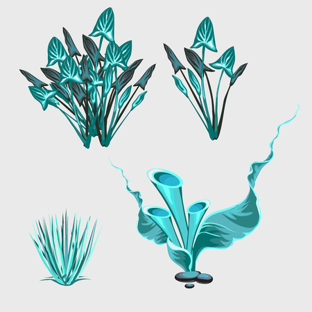 under water grass: Blue underwater sea plants, four vector icons