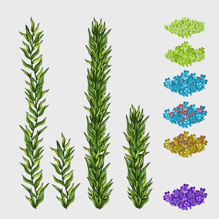 flowerbeds: Green grass and square flowerbeds different colors natural series