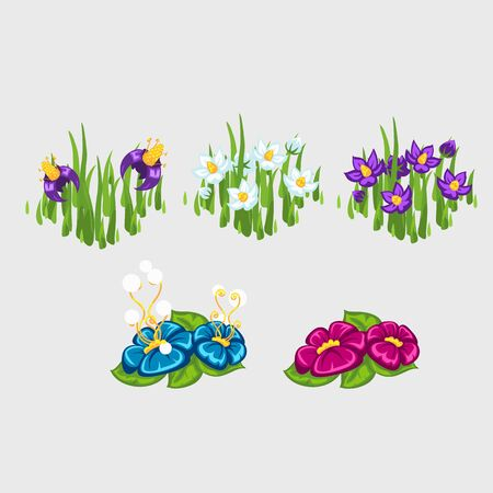 flowerbeds: Five flowerbeds with different flowers, plant series
