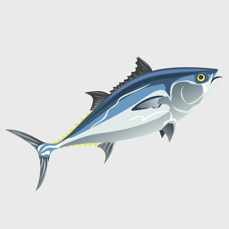 Immagine del pesce isolato, vettore Vettoriali