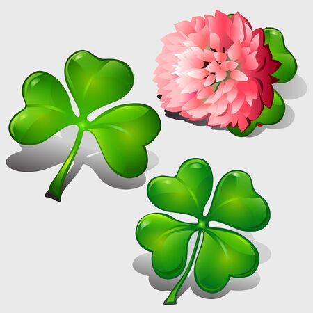 goodluck: Clover leaves and pink flower, vector