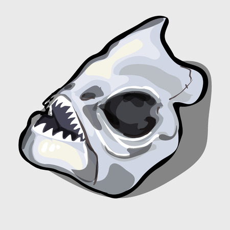creatures: Cranial bone fish, head ancient toothy creatures, vector illustration