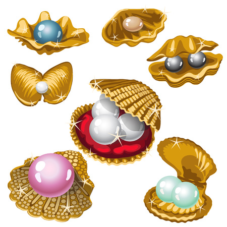 Gold shell with white, black, pink and blue pearls. Big vector collection