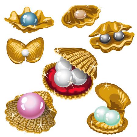 guscio d'oro con perle bianche, nere, rosa e blu. grande raccolta vettore Vettoriali