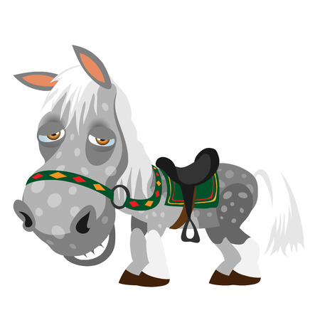 Gray spotted tired horse, animal cartoon style. Vector character