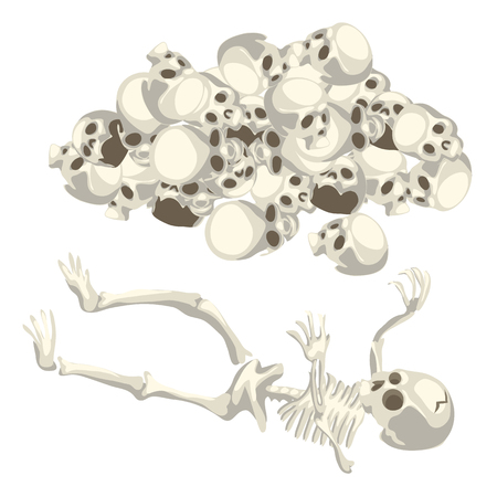 Human skeleton and a pile of skulls. Vector isolated illustration