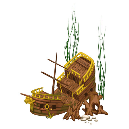 Broken old wooden ship surrounded by seaweed and roots
