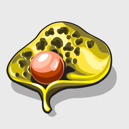 saltwater pearl: Pink pearl in a Golden shell, cartoon style. Vector illustration Illustration