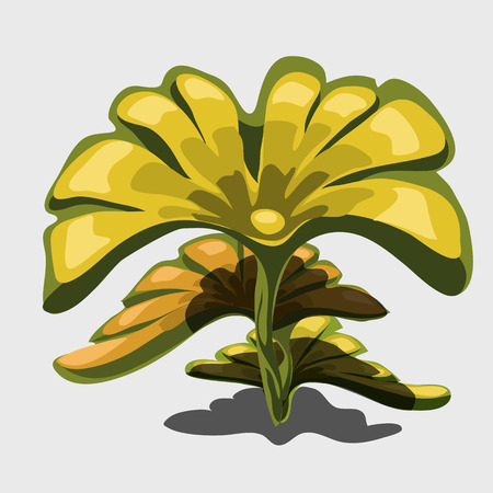 Yellow exotic plant with large leaves. Vector cartoon image