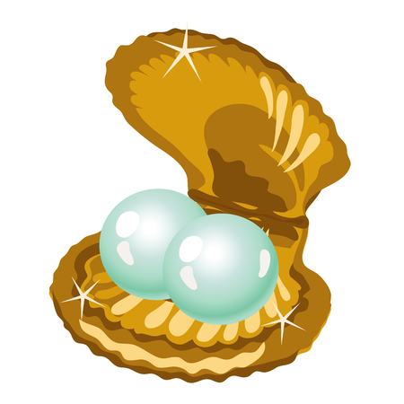 cockle: Two shiny pearls in a gold box of shells. A series of pictures with pearls Illustration