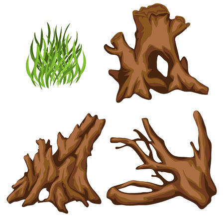 tuft: Bizarre tree roots and tuft of grass, four vector items isolated