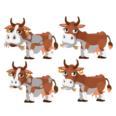 chewing: Four brown and spotted cows chewing grass. Vector animals Illustration