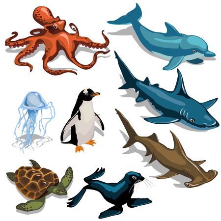 subaquatic: Big fish, Dolphin, turtle and other members of deep sea, eight animals vector