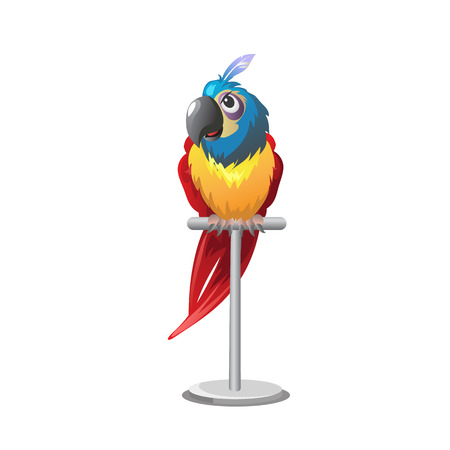 perch: Tropical colorful parrot sitting on perch on white background Illustration