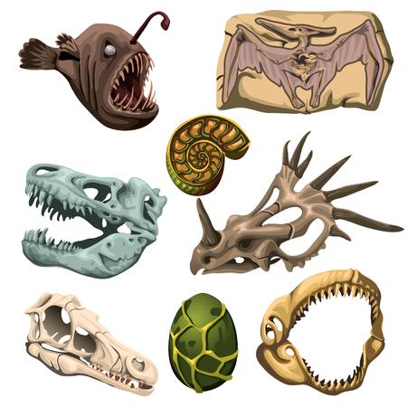 animaux fossiles anciens, les poissons et les oeufs, l'image de huit vecteur