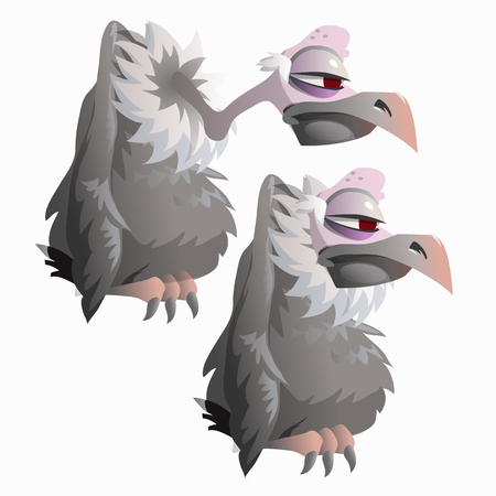 carrion: Funny bird vulture on white background, vector illustration isolated