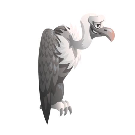 Drôle vautour sur fond blanc, illustration vectorielle isolé