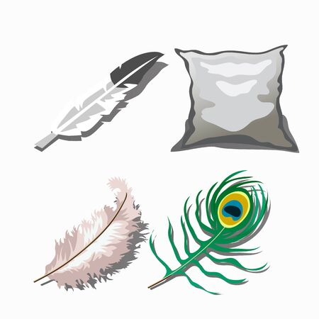 white pillow: Three different feathers and white pillow. Vector set Illustration