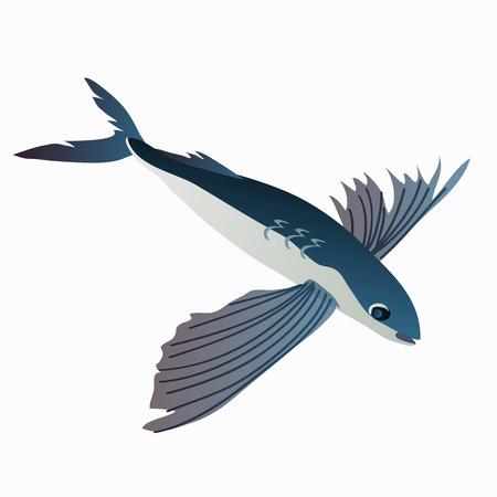 mediterranean diet: Flying fish in cartoon style on white background. Vector illustration