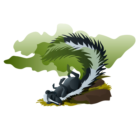 Skunk sleeps and exudes stinking smell. Funny vector scene
