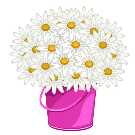 floriculture: Large bouquet of daisies in pink pot, vector flowers in cartoon style