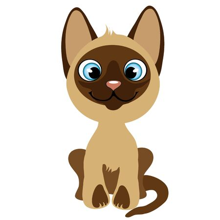 mjau: Cute cartoon kitten with blue eyes, vector pets, animal isolated Illustration