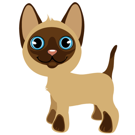 wiskers: Cute cartoon standing kitten with blue eyes, vector pets, animal isolated Illustration