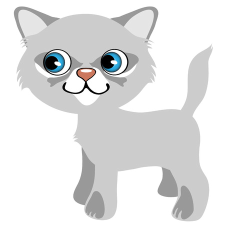 mjau: Pretty gray kitten with blue eyes, vector cartoon pet, animal isolated