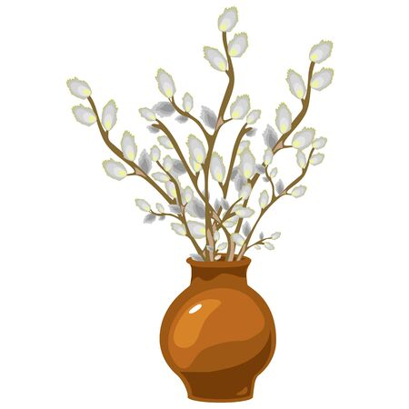 pussy willow: Willow in vase, vector bouquet of flowers isolated, decor Illustration