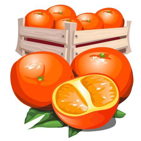 Box of fresh ripe orange with leaves. Isolated illustration