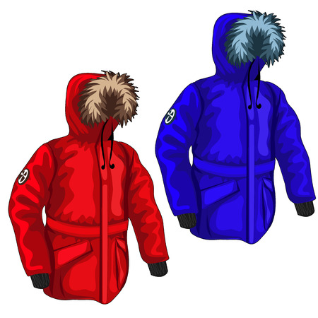 fur hood: Warm down jacket for winter in different colors, vector clothing Illustration