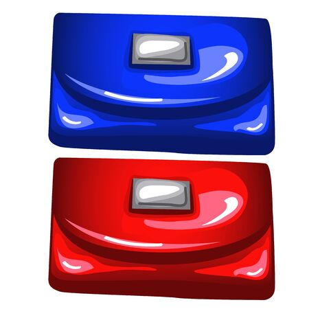 purses: Blue and red shiny purses on white background, vector isolated
