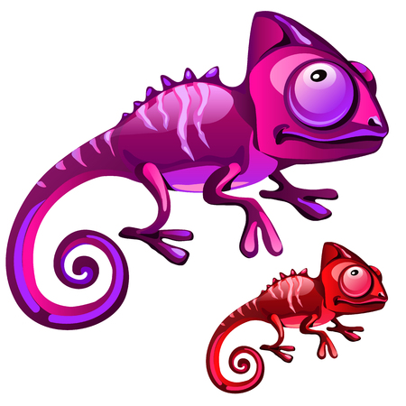 Two cartoon iguanas in red and purple color, vector isolated Illustration