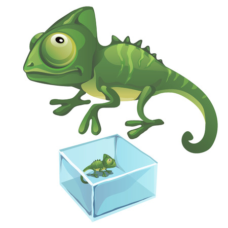 Green iguana and one frozen in the ice, vector isolated
